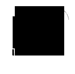 PINI Logo
